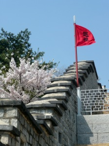 flag_and_blossoms