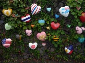 heart_wall