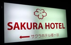 japan_sakura_hotel