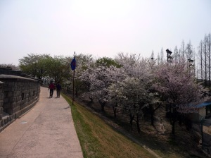 just_walking_along_the_wall
