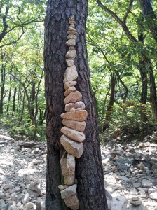 rocks_on_the_tree