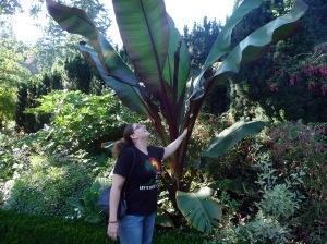 shakspear garden