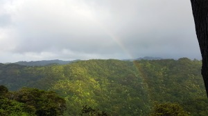 rainbow in valley.jpg