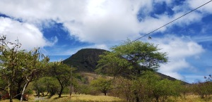 kokohead from parking